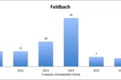 fvmt_feldbach_gefangene_fische_2010-2017